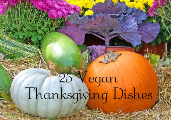 25 Vegan Thanksgiving Dishes